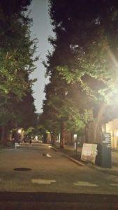 東京大学学内