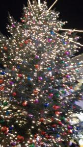 ベイクォータークリスマスツリー